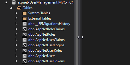 db Custom User Management in ASP.NET Core MVC with Identity